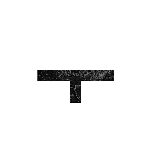 Friends - Studio Taf